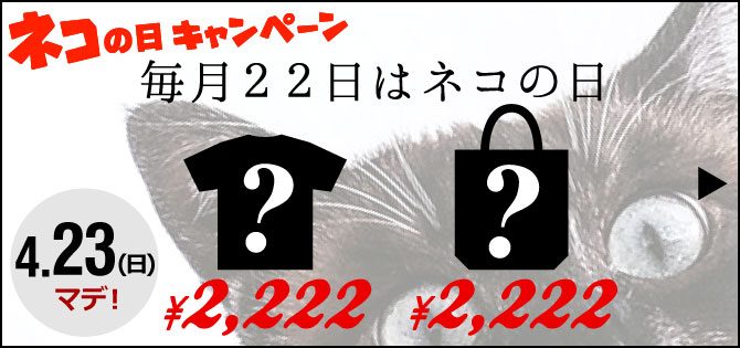 【猫の日限定】特別商品